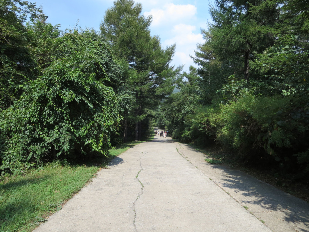 The first and last legs of the trail were on the main road in the park.
