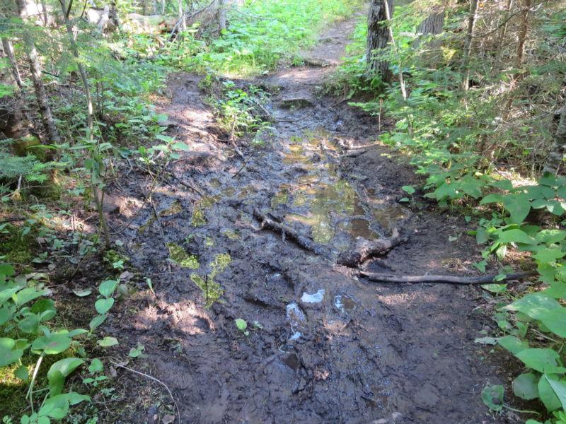mud 3-w800-h600